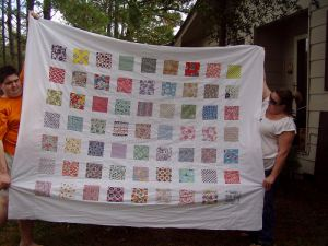 Feedsack Delight Quilt Top