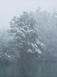snow11resizeopt