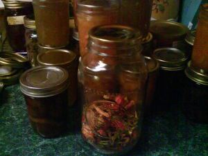 Mixed Dried Peppers